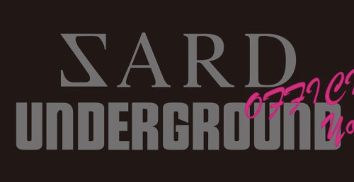 ZARDのカバー曲を歌っているSARD UNDERGROUNDがいい感じ!