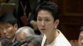 蓮舫議員が少子化対策の議論を妨害