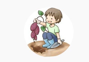 種から植物を育てる 「のりんごチャンネル」が面白い