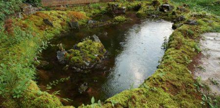 池を作る動画「AquaCat」が面白い